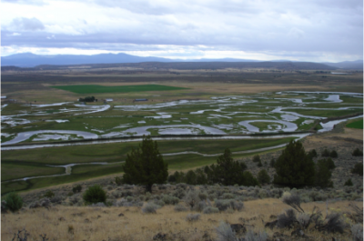 The Carey Ranch floodplain pastures and wetlands have been maintained through reconstruction of key infrastructure in 2009 and 2010, Credit: IWJV